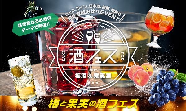 酒フェス梅酒&果実酒編